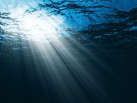 save-the-ocean-tips_13821_600x450[1]